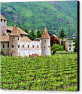 Castle And Vineyard In Italy Canvas Print by Greg Matchick