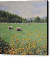 Castleton Canvas Print by Cynthia Satton