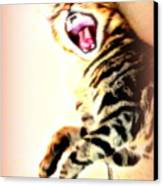 Cat Screaming To Me Canvas Print
