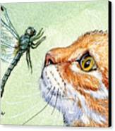 Cat And Dragonfly  Canvas Print