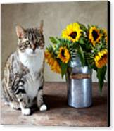 Cat And Sunflowers Canvas Print by Nailia Schwarz