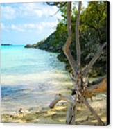 Cat Island Cove Canvas Print