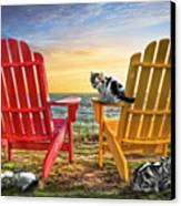Cat Nap At The Beach Canvas Print by Debra and Dave Vanderlaan