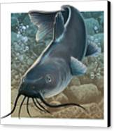 Catfish Canvas Print by Valer Ian