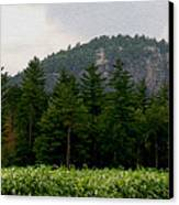 Cathedral Ledge North Conway Nh Canvas Print