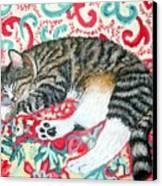 Catnap Time Canvas Print