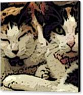 Cats In Bed Canvas Print