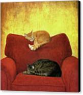 Cats Sleeping On Sofa Canvas Print