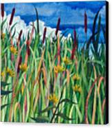 Cattails Canvas Print by Helen Klebesadel