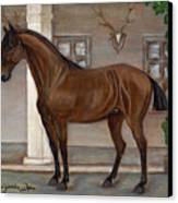 Cavalry Horse Canvas Print by Anna Folkartanna Maciejewska-Dyba