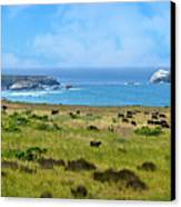 Central Coast Panorama - Hwy 1 Canvas Print by Lynn Bauer