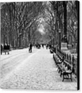 Central Park 2 Canvas Print by Wayne Gill