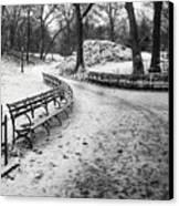 Central Park 3 Canvas Print by Wayne Gill