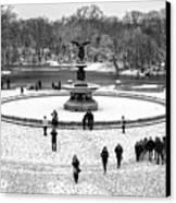 Central Park 5 Canvas Print
