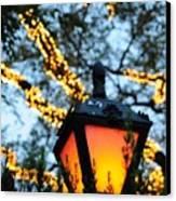 Central Park 6546 Canvas Print