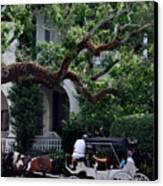 Charleston Buggy Ride Canvas Print