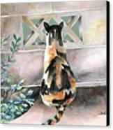 Checking Out The Neighbors Backyard Canvas Print