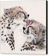 Cheetah Love Canvas Print by Marqueta Graham