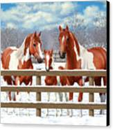 Chestnut Paint Horses In Snow Canvas Print by Crista Forest