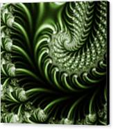 Chlorophyll Canvas Print