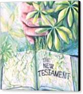 Christian Artist Rooted In The Word Canvas Print