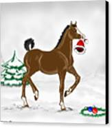 Christmas Colt Canvas Print