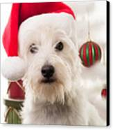 Christmas Elf Dog Canvas Print