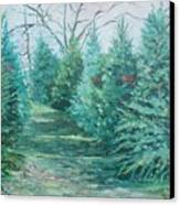 Christmas Tree Lot Canvas Print by Rosemary Kavanagh