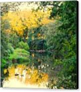 Chunky River Reflections Canvas Print
