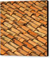 Clay Roof Tiles Canvas Print by David Buffington