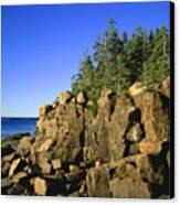 Coastal Maine Canvas Print by John Greim