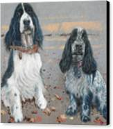 Cocker Spaniels Canvas Print