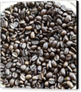 Coffee Beans From Brazil  Canvas Print