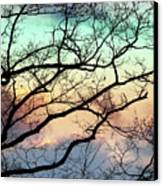 Cold Hearted Bliss Canvas Print