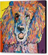 Cole Canvas Print