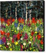 Colorado Rockies Wildflowers Canvas Print