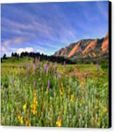 Colorado Wildflowers Canvas Print by Scott Mahon