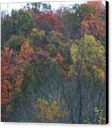 Color's Of Fall Canvas Print