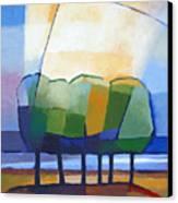 Come Spring Canvas Print by Lutz Baar