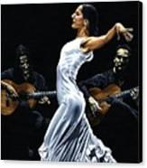 Concentracion Del Funcionamiento Del Flamenco Canvas Print