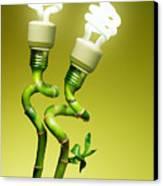 Conceptual Lamps Canvas Print by Carlos Caetano