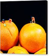 Construction On Oranges Canvas Print by Paul Ge