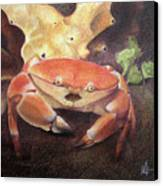 Coral Crab Canvas Print