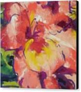 Coral Glad Canvas Print