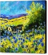 Cornflowers In Ver Canvas Print