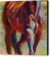 Corral Boss - Mustang Canvas Print