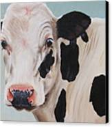 Cosmoo Cow Canvas Print by Laura Carey