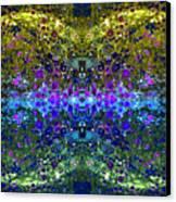 Cosmos Crown Jewels 2 Canvas Print