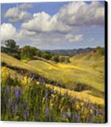 Cottonwood Canyon Canvas Print by Sharon Foster