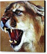 Cougar Canvas Print by J W Baker